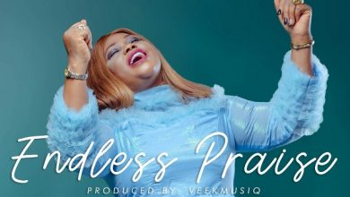Photo of Endless Praise – Favour George (Mp3, Video and Lyrics)