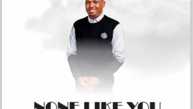 None Like You by Harvest king Mp3, Lyrics, Video